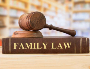 top family law firms Newcastle